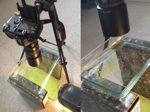Oil and Water Photography Setup