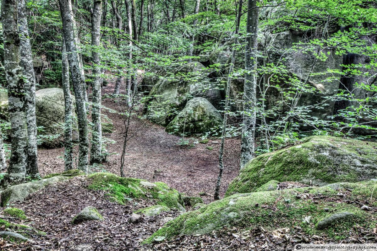 Enchanted Rocks (Sant Feliu de Pallerols, Catalonia)