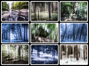 Blurred Worlds Gallery